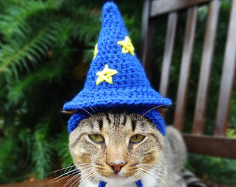 cat-wizard-hat02.jpg