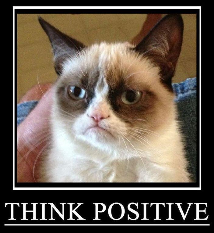 gcat-positive.jpg